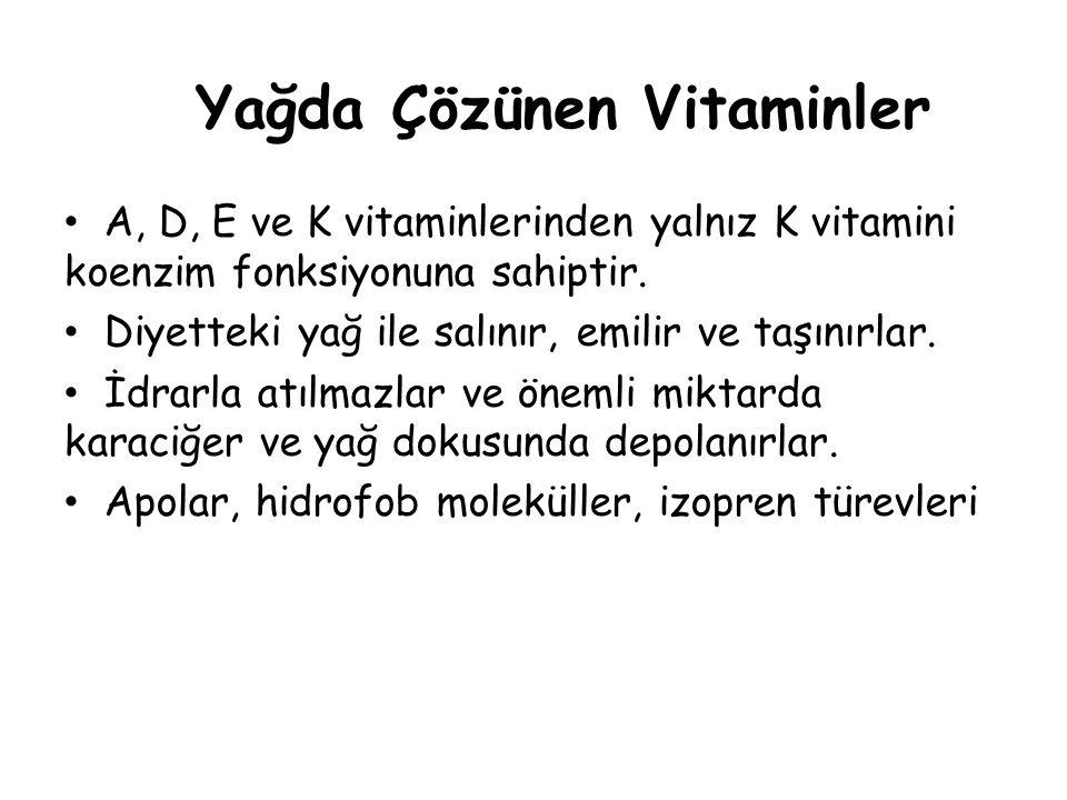 Yağda Çözünen Vitaminler A, D, E ve K vitaminlerinden yalnız K vitamini koenzim fonksiyonuna sahiptir.