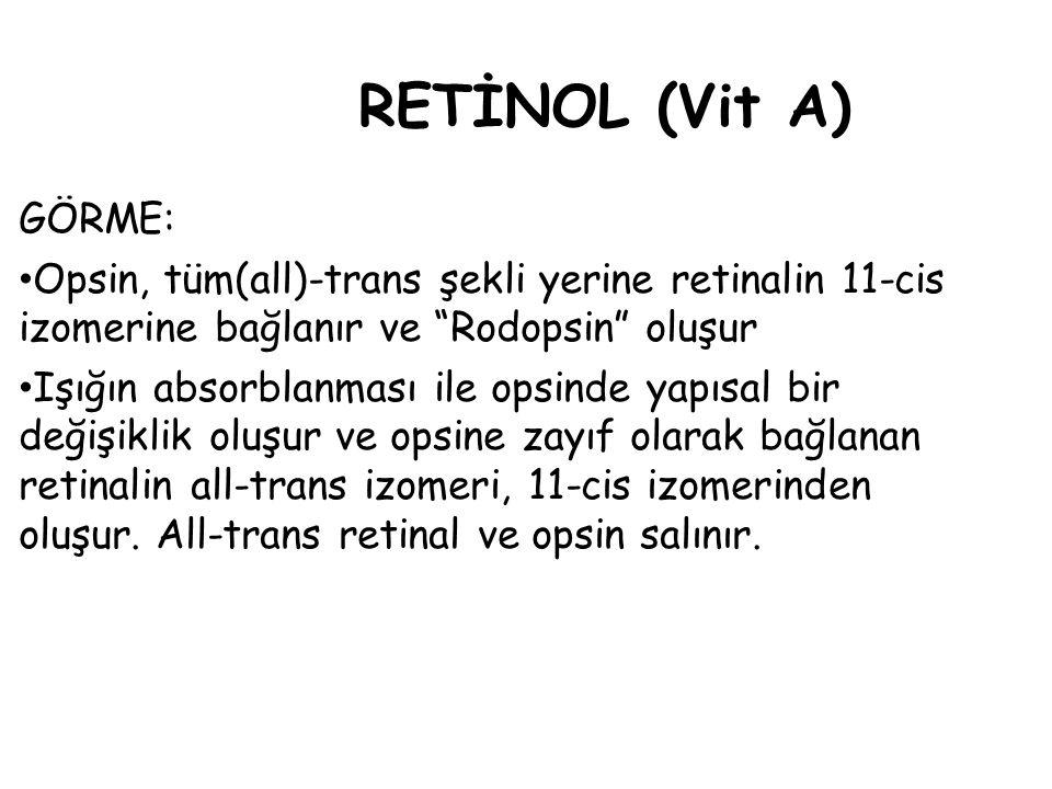 RETİNOL (Vit A) GÖRME: Opsin, tüm(all)-trans şekli yerine retinalin 11-cis izomerine bağlanır ve Rodopsin oluşur Işığın absorblanması ile opsinde yapısal bir değişiklik oluşur ve opsine zayıf olarak bağlanan retinalin all-trans izomeri, 11-cis izomerinden oluşur.
