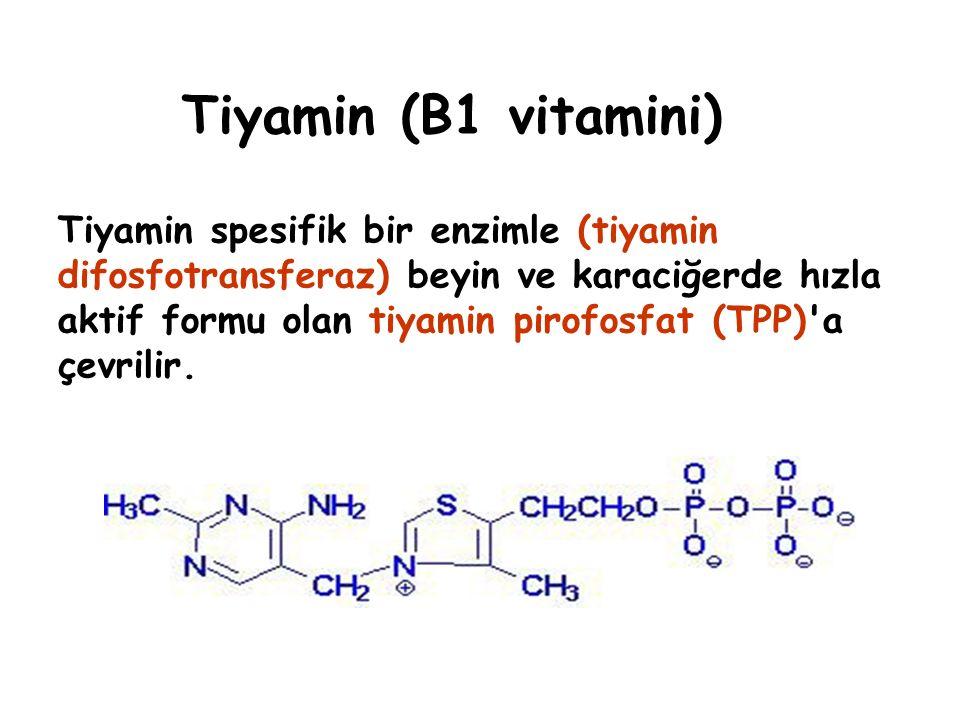 Tiyamin Pirofosfat (TPP) Kullanıldığı reaksiyonlar – Piruvat Dhg (Prv → asetil CoA) - α- Ketoglutarat Dhg (aKg → süksinal CoA) – Lösin, izolösin, valin gibi a-ketoasitlerin oksidatif dekarboksilasyonu – Transketolaz (pentozfosfat yolu) – Eksiklik: Beriberi