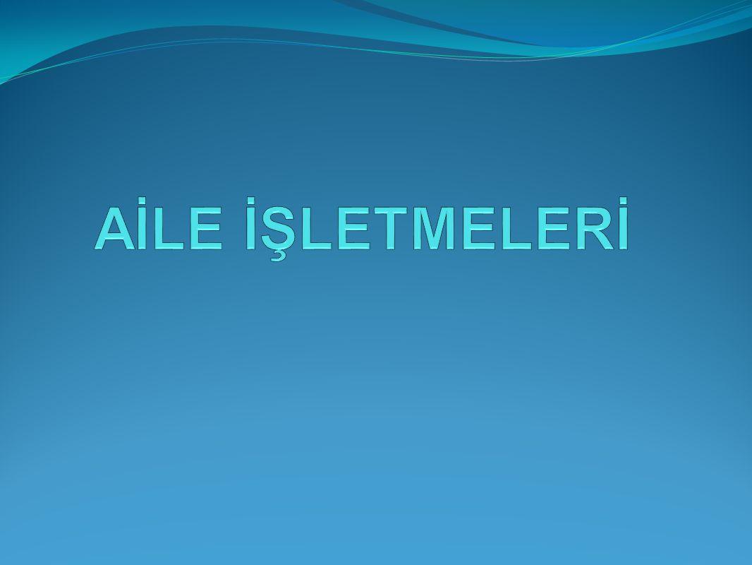 1.Giriş Türkiye'de kamu kurumlarını bir kenara bırakırsak şirketlerin yüzde 99'unu aile şirketleri oluşturuyor.