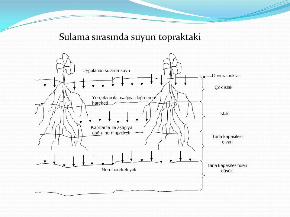 Uygulanan sulama suyu Çok ıslak Islak Tarla kapasitesi civarı Tarla kapasitesinden düşük Doyma noktası Yerçekimi ile aşağıya doğru nem hareketi Kapill