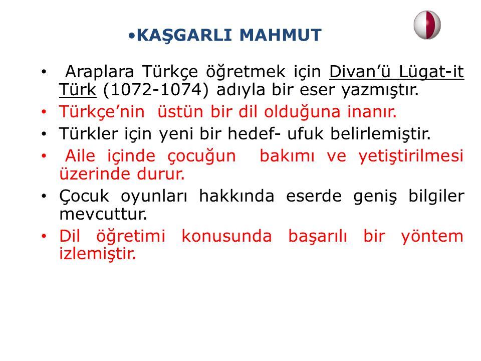 Araplara Türkçe öğretmek için Divan'ü Lügat-it Türk (1072-1074) adıyla bir eser yazmıştır. Türkçe'nin üstün bir dil olduğuna inanır. Türkler için yeni