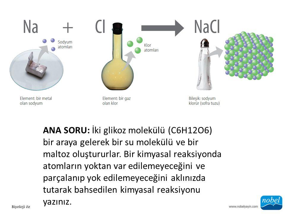 ANA SORU: İki glikoz molekülü (C6H12O6) bir araya gelerek bir su molekülü ve bir maltoz oluştururlar. Bir kimyasal reaksiyonda atomların yoktan var ed