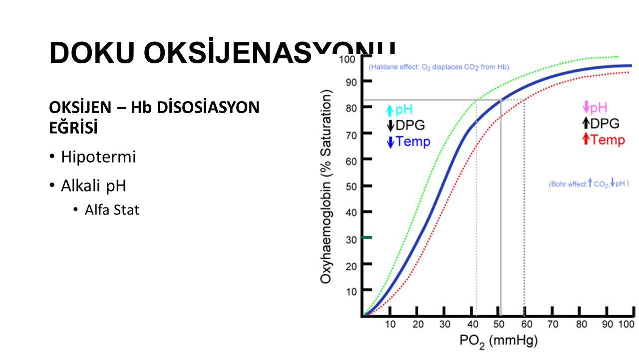 DOKU OKSİJENASYONU OKSİJEN – Hb DİSOSİASYON EĞRİSİ Hipotermi Alkali pH Alfa Stat