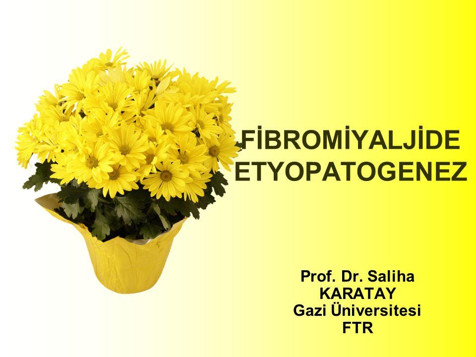 FİBROMİYALJİDE ETYOPATOGENEZ Prof. Dr. Saliha KARATAY Gazi Üniversitesi FTR