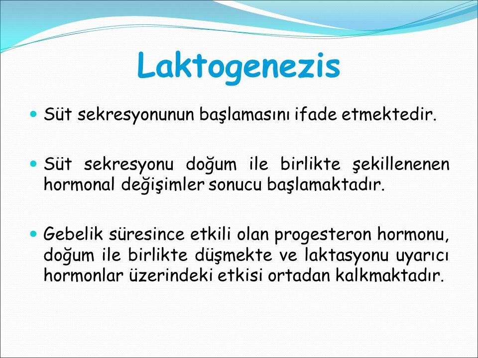 Laktogenezis Süt sekresyonunun başlamasını ifade etmektedir. Süt sekresyonu doğum ile birlikte şekillenenen hormonal değişimler sonucu başlamaktadır.
