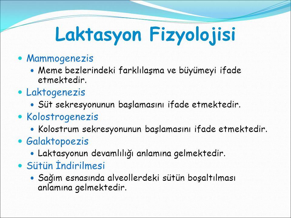 Laktasyon Fizyolojisi Mammogenezis Meme bezlerindeki farklılaşma ve büyümeyi ifade etmektedir. Laktogenezis Süt sekresyonunun başlamasını ifade etmekt