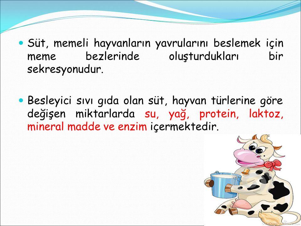 Süt, memeli hayvanların yavrularını beslemek için meme bezlerinde oluşturdukları bir sekresyonudur.