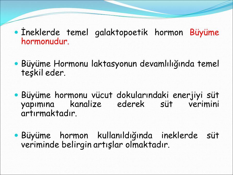 İneklerde temel galaktopoetik hormon Büyüme hormonudur. Büyüme Hormonu laktasyonun devamlılığında temel teşkil eder. Büyüme hormonu vücut dokularındak