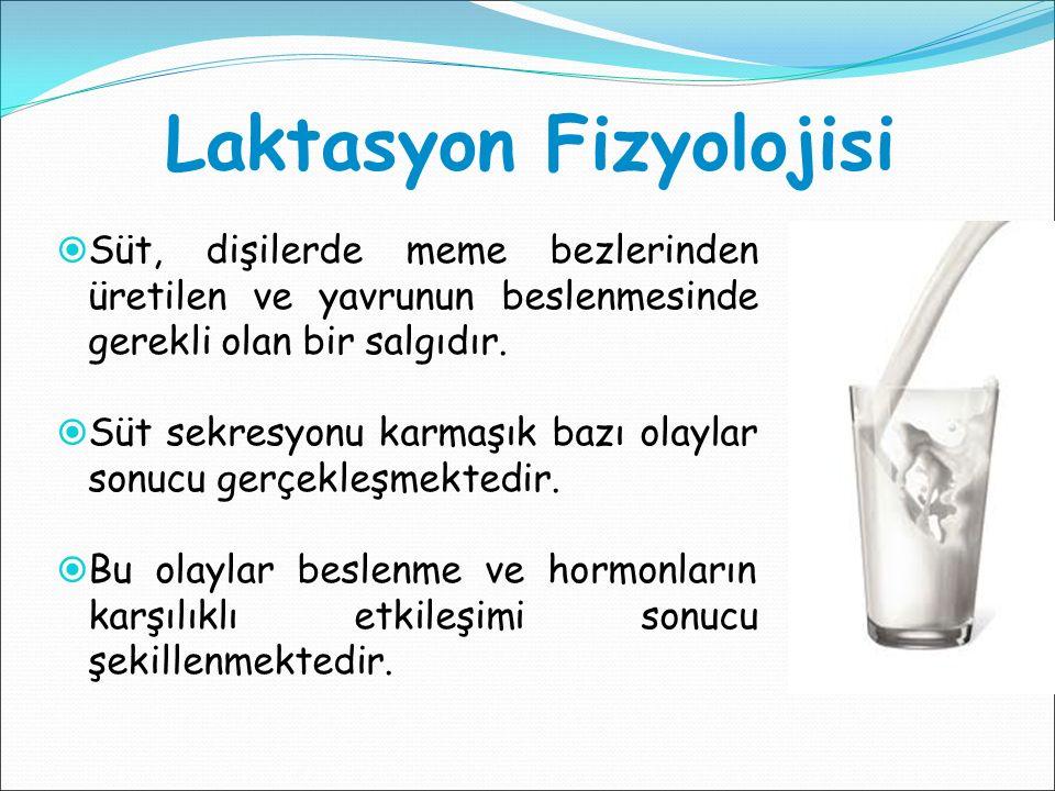 Laktasyon Fizyolojisi  Süt, dişilerde meme bezlerinden üretilen ve yavrunun beslenmesinde gerekli olan bir salgıdır.  Süt sekresyonu karmaşık bazı o