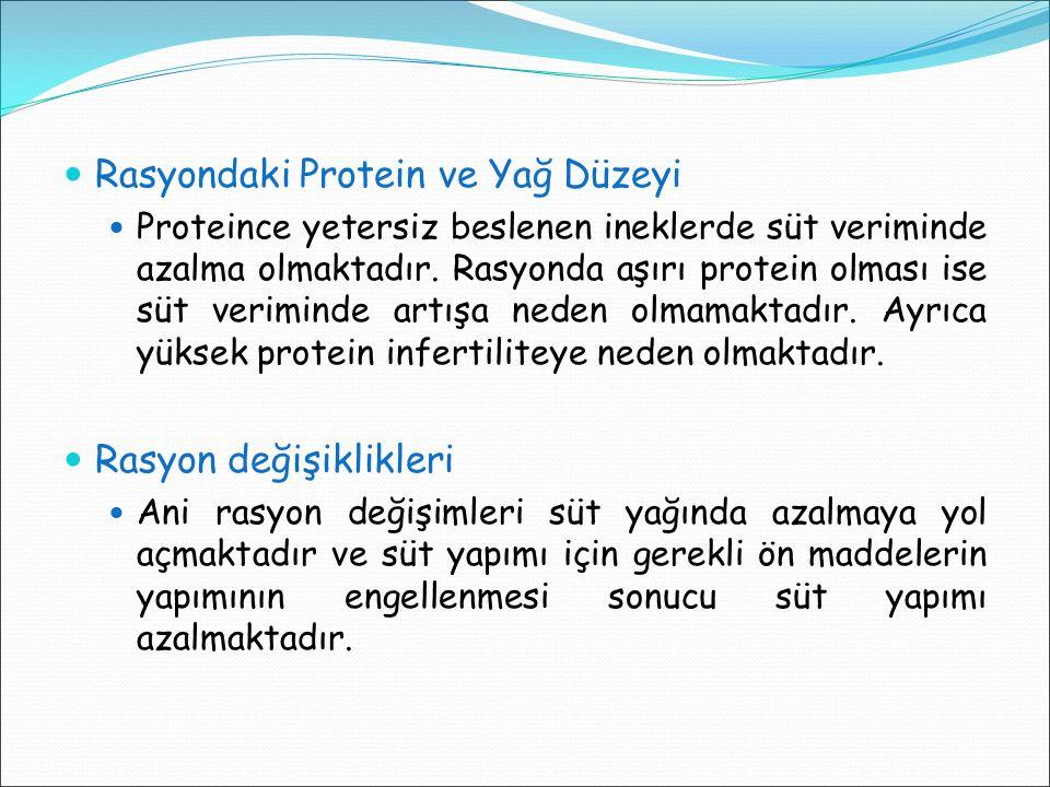 Rasyondaki Protein ve Yağ Düzeyi Proteince yetersiz beslenen ineklerde süt veriminde azalma olmaktadır. Rasyonda aşırı protein olması ise süt verimind