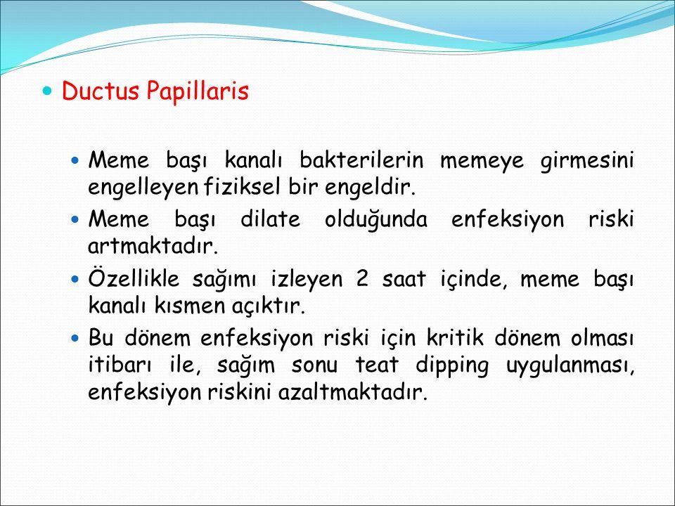 Ductus Papillaris Meme başı kanalı bakterilerin memeye girmesini engelleyen fiziksel bir engeldir. Meme başı dilate olduğunda enfeksiyon riski artmakt