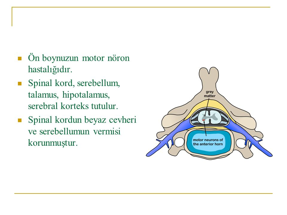 Ön boynuzun motor nöron hastalığıdır. Spinal kord, serebellum, talamus, hipotalamus, serebral korteks tutulur. Spinal kordun beyaz cevheri ve serebell