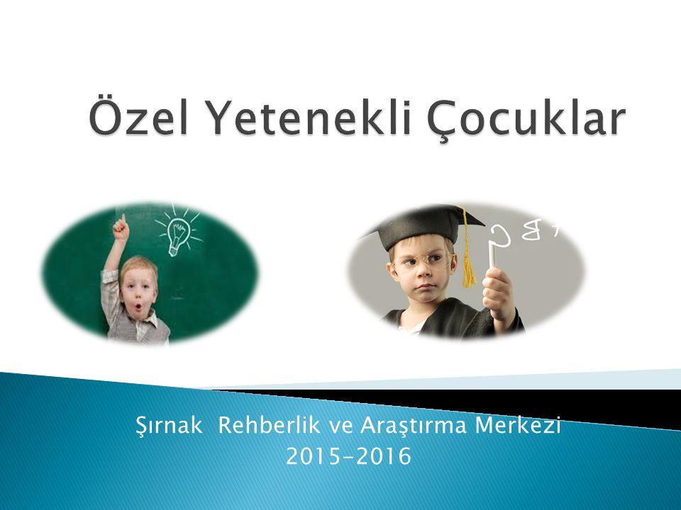 Şırnak Rehberlik ve Araştırma Merkezi 2015-2016