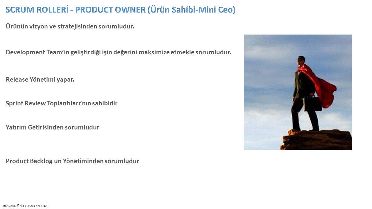 Bankaya Özel / Internal Use Ürünün vizyon ve stratejisinden sorumludur.