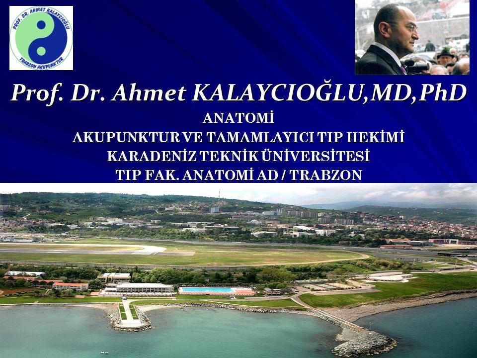 Prof. Dr. Ahmet KALAYCIOĞLU,MD,PhD ANATOMİ AKUPUNKTUR VE TAMAMLAYICI TIP HEKİMİ KARADENİZ TEKNİK ÜNİVERSİTESİ TIP FAK. ANATOMİ AD / TRABZON