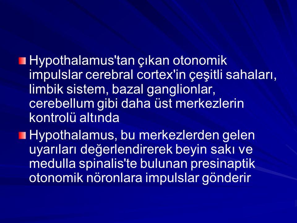 Hypothalamus'tan çıkan otonomik impulslar cerebral cortex'in çeşitli sahaları, limbik sistem, bazal ganglionlar, cerebellum gibi daha üst merkezlerin