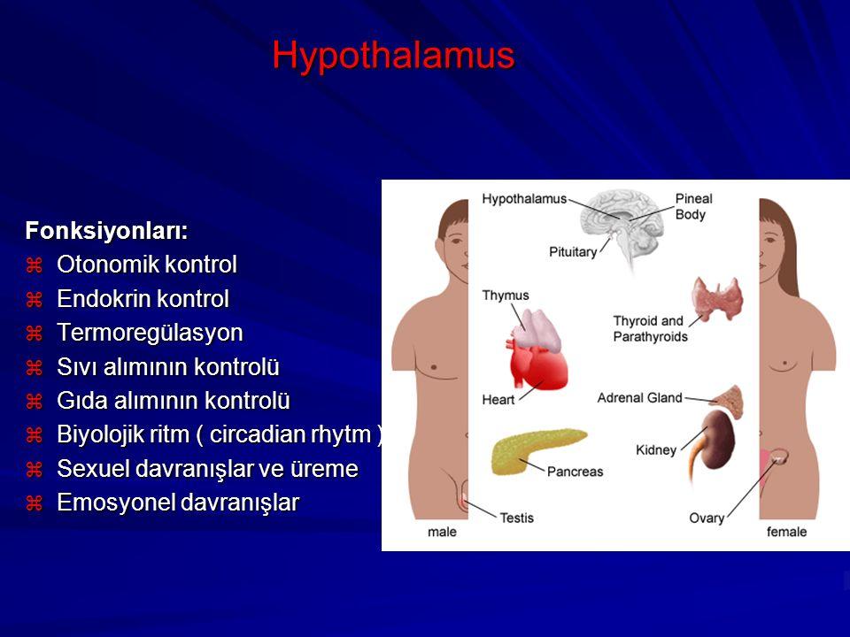 Hypothalamus Fonksiyonları:  Otonomik kontrol  Endokrin kontrol  Termoregülasyon  Sıvı alımının kontrolü  Gıda alımının kontrolü  Biyolojik ritm