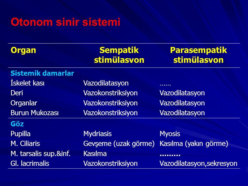 Otonom sinir sistemi OrganSempatik stimülasvon Parasempatik stimülasvon Sistemik damarlar İskelet kası Deri Organlar Burun Mukozası Vazodilatasyon Vaz