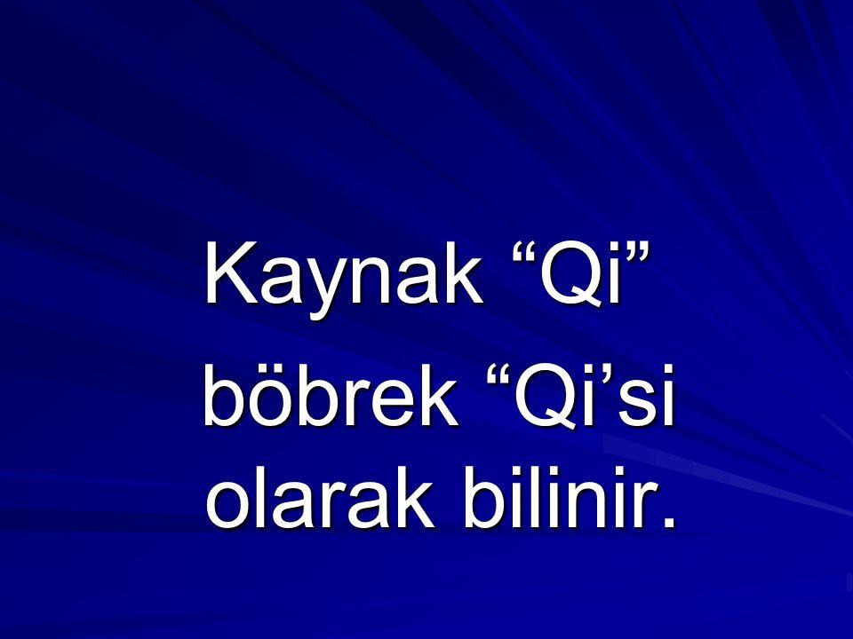 "Kaynak ""Qi"" böbrek ""Qi'si olarak bilinir. böbrek ""Qi'si olarak bilinir."