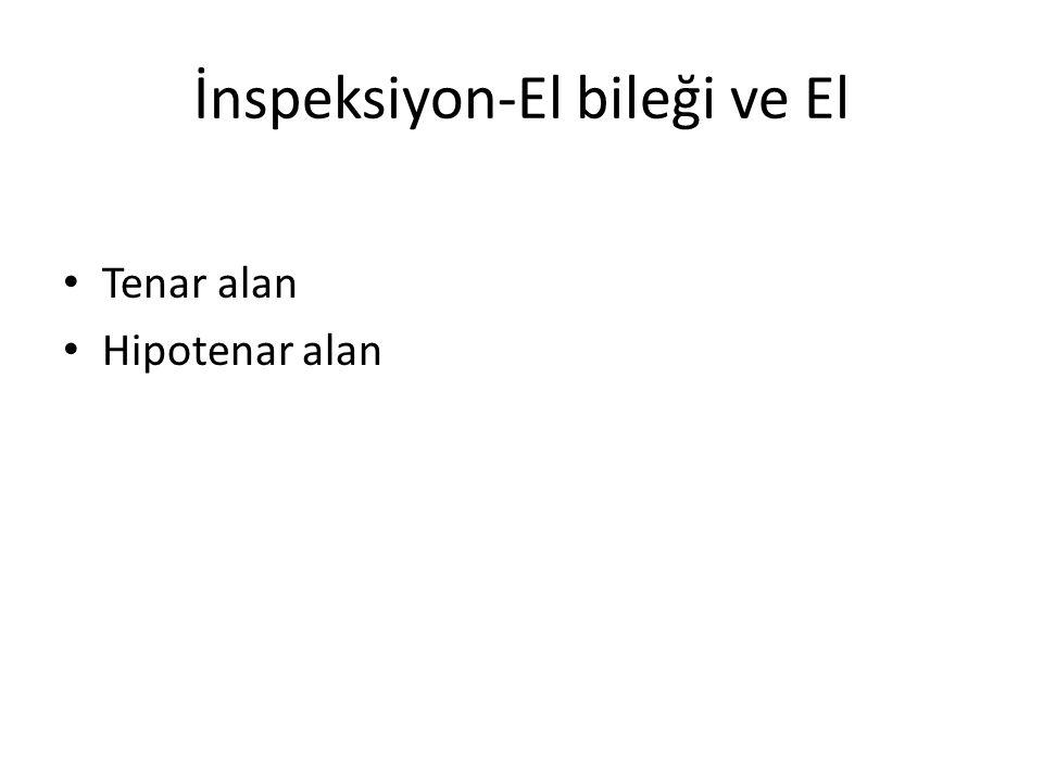İnspeksiyon-Omurga Kifoz Lordoz Skolyoz