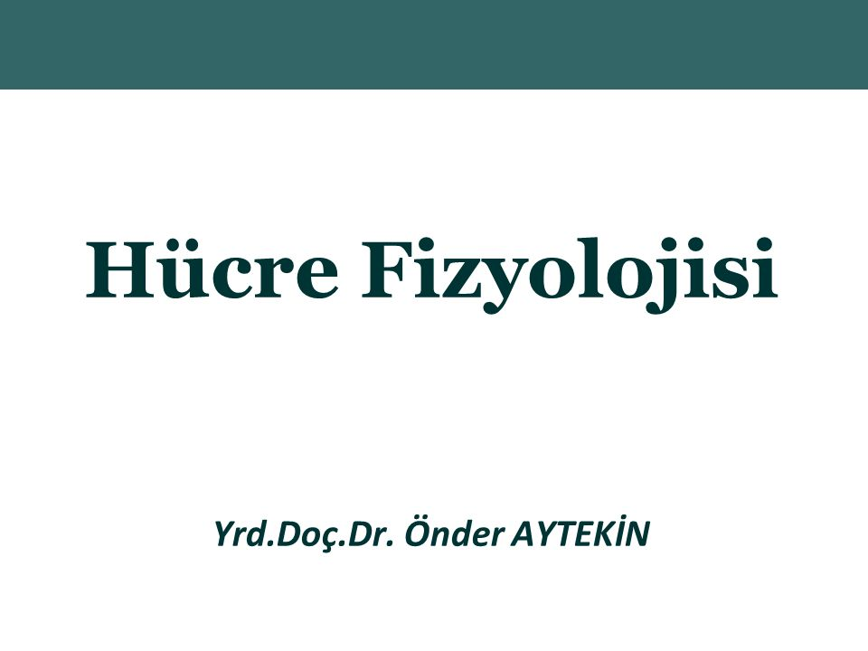 Copyright © 2004 Pearson Education, Inc., publishing as Benjamin Cummings Hücre Fizyolojisi Yrd.Doç.Dr.