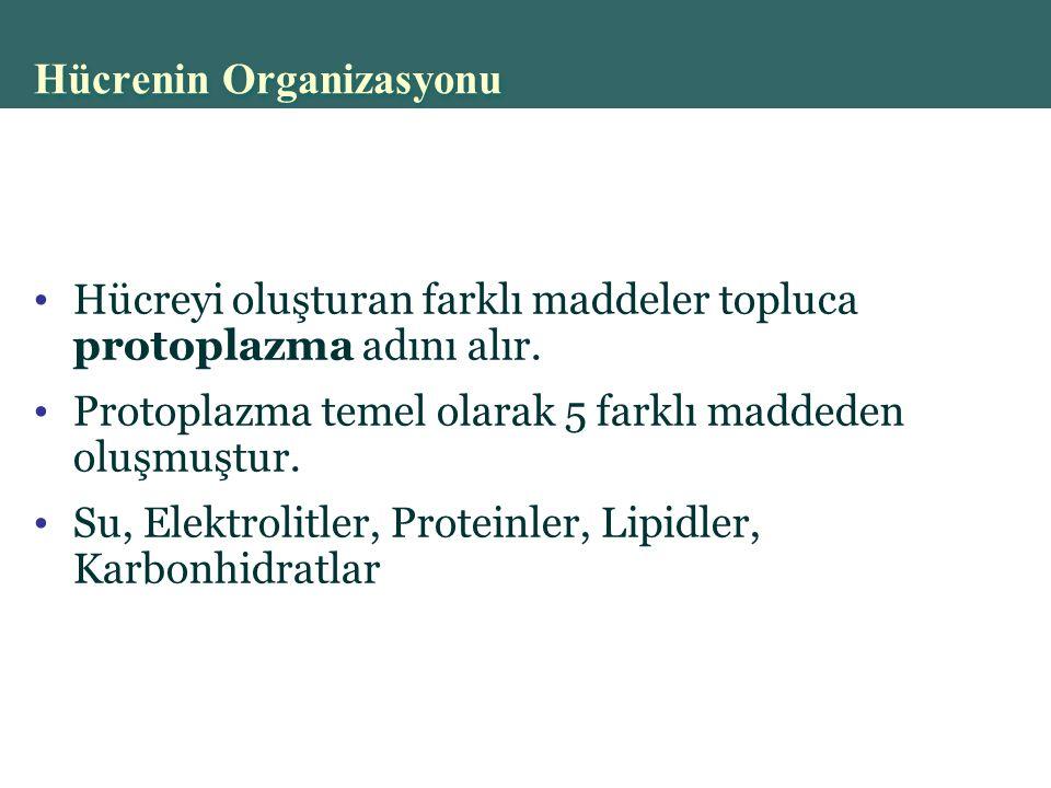 Copyright © 2004 Pearson Education, Inc., publishing as Benjamin Cummings Hücrenin Organizasyonu Hücreyi oluşturan farklı maddeler topluca protoplazma adını alır.