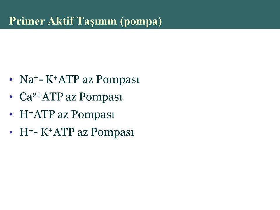 Copyright © 2004 Pearson Education, Inc., publishing as Benjamin Cummings Primer Aktif Taşınım (pompa) Na + - K + ATP az Pompası Ca 2+ ATP az Pompası H + ATP az Pompası H + - K + ATP az Pompası