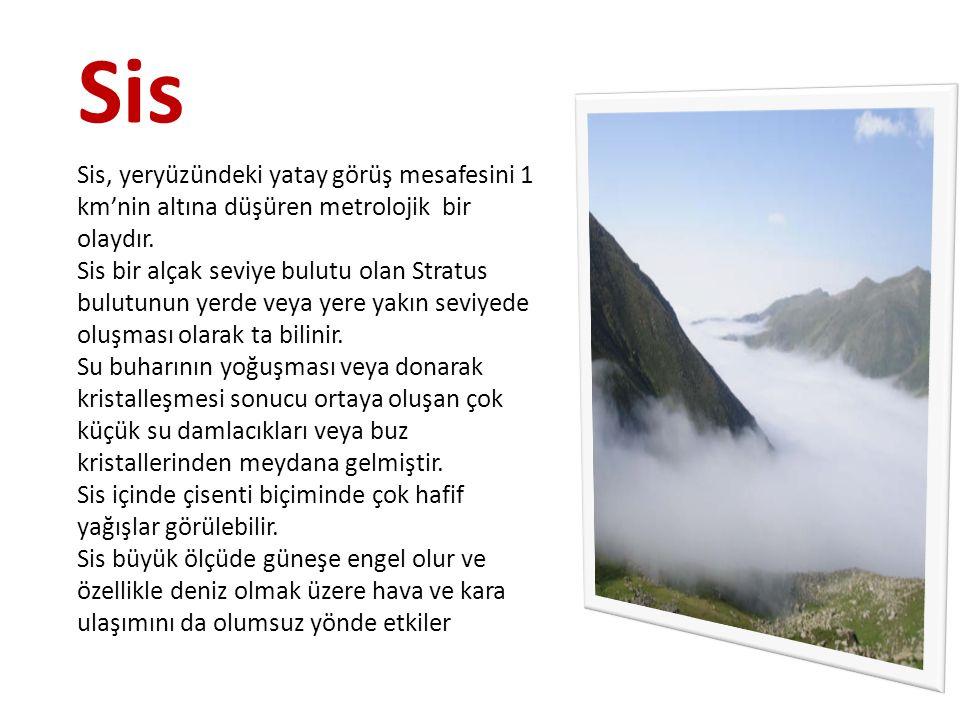Sis Sis, yeryüzündeki yatay görüş mesafesini 1 km'nin altına düşüren metrolojik bir olaydır. Sis bir alçak seviye bulutu olan Stratus bulutunun yerde