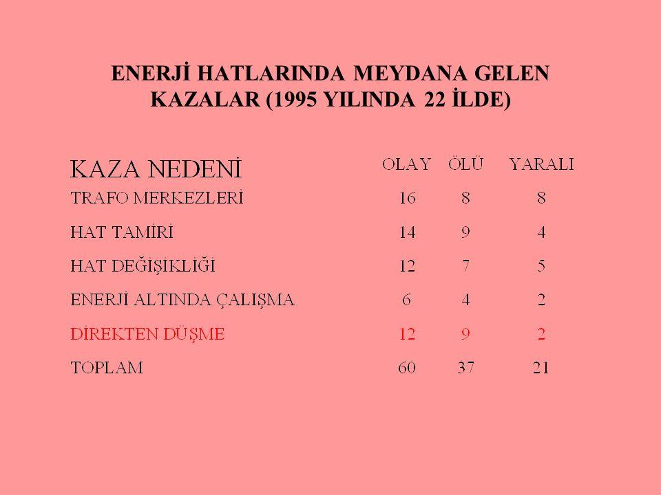 ENERJİ HATLARINDA MEYDANA GELEN KAZALAR (1995 YILINDA 22 İLDE)