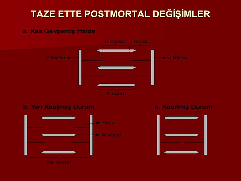 TAZE ETTE POSTMORTAL DEĞİŞİMLER