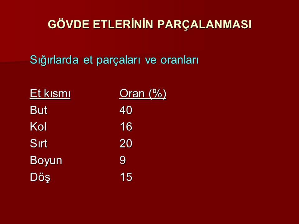 GÖVDE ETLERİNİN PARÇALANMASI Sığırlarda et parçaları ve oranları Et kısmıOran (%) But40 Kol16 Sırt20 Boyun9 Döş15