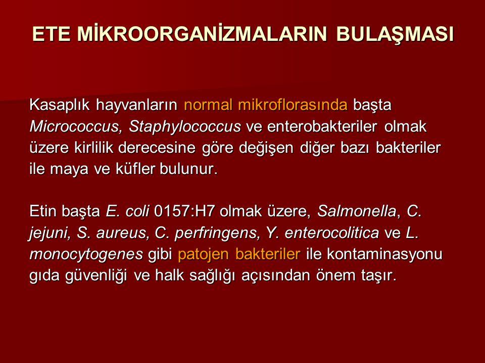 ETE MİKROORGANİZMALARIN BULAŞMASI Kasaplık hayvanların normal mikroflorasında başta Micrococcus, Staphylococcus ve enterobakteriler olmak üzere kirlil