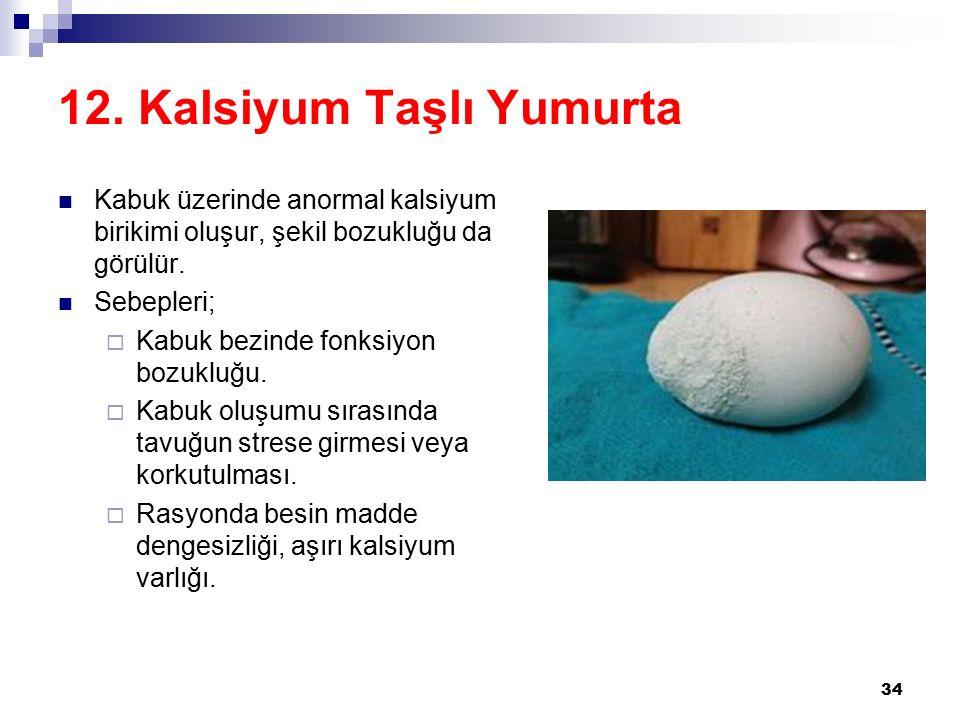 12. Kalsiyum Taşlı Yumurta Kabuk üzerinde anormal kalsiyum birikimi oluşur, şekil bozukluğu da görülür. Sebepleri;  Kabuk bezinde fonksiyon bozukluğu