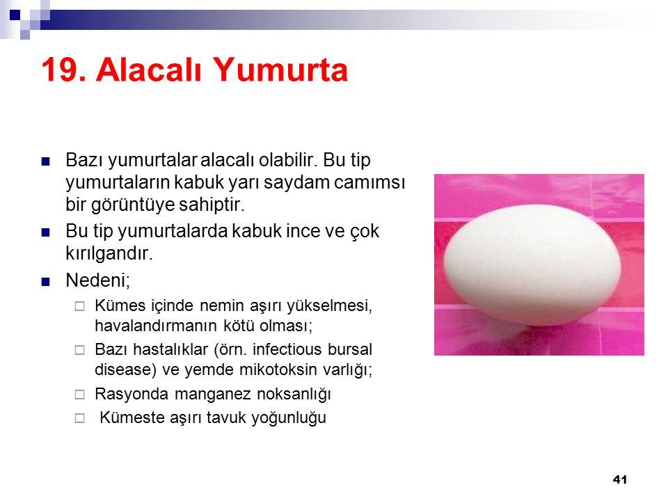19.Alacalı Yumurta Bazı yumurtalar alacalı olabilir.