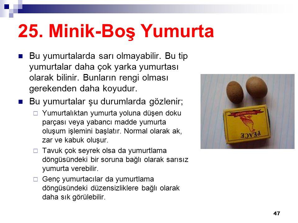 25.Minik-Boş Yumurta Bu yumurtalarda sarı olmayabilir.