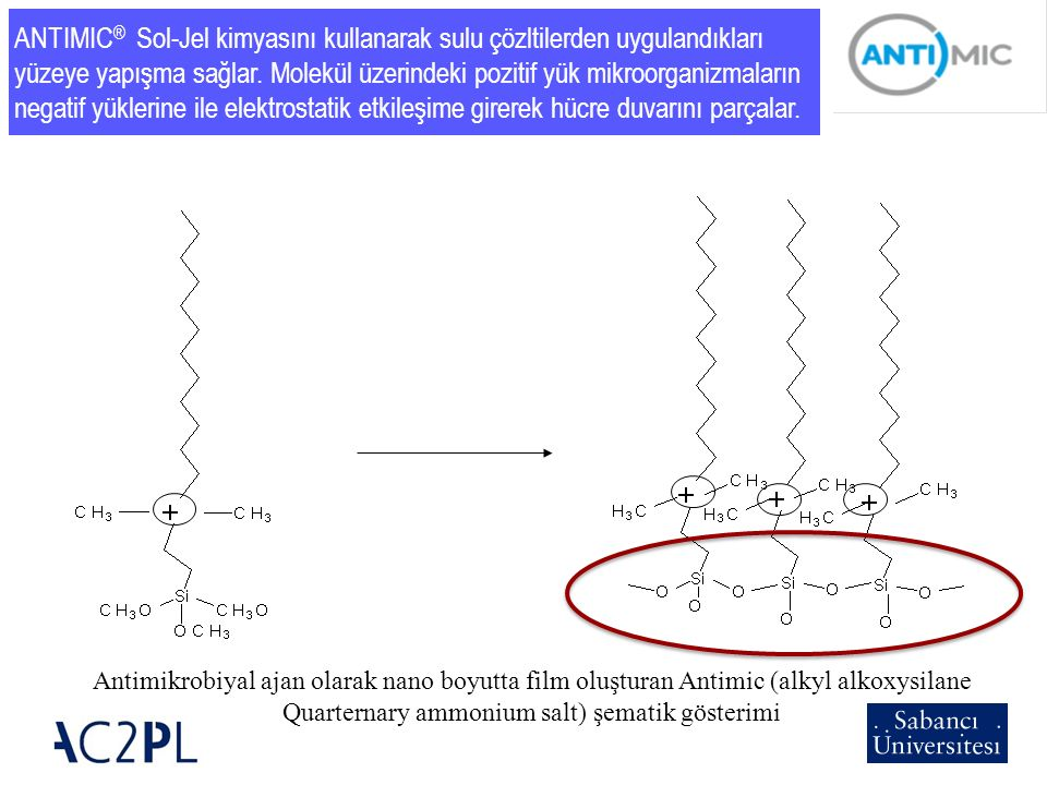 Antimikrobiyal ajan olarak nano boyutta film oluşturan Antimic (alkyl alkoxysilane Quarternary ammonium salt) şematik gösterimi ANTIMIC ® Sol-Jel kimy