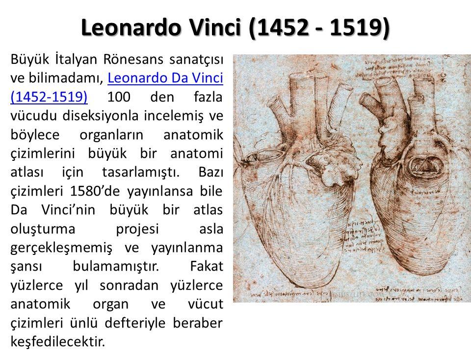Büyük İtalyan Rönesans sanatçısı ve bilimadamı, Leonardo Da Vinci (1452-1519) 100 den fazla vücudu diseksiyonla incelemiş ve böylece organların anatom