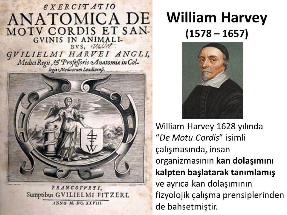 """William Harvey 1628 yılında """"De Motu Cordis"""" isimli çalışmasında, insan organizmasının kan dolaşımını kalpten başlatarak tanımlamış ve ayrıca kan dola"""