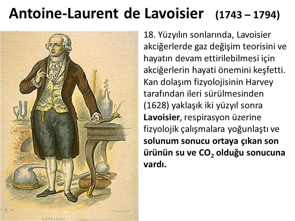 18. Yüzyılın sonlarında, Lavoisier akciğerlerde gaz değişim teorisini ve hayatın devam ettirilebilmesi için akciğerlerin hayati önemini keşfetti. Kan
