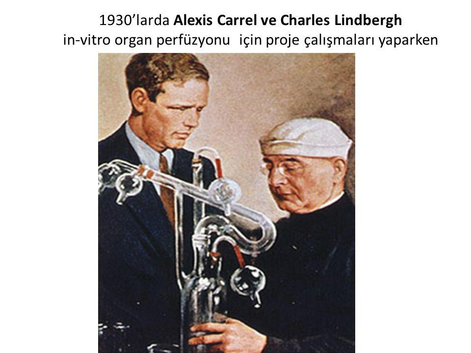 1930'larda Alexis Carrel ve Charles Lindbergh in-vitro organ perfüzyonu için proje çalışmaları yaparken