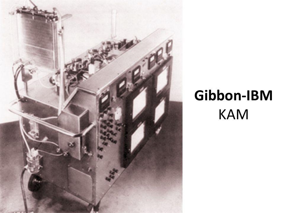 Gibbon-IBM KAM
