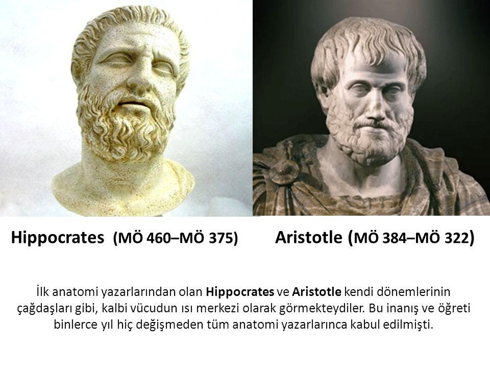 İlk anatomi yazarlarından olan Hippocrates ve Aristotle kendi dönemlerinin çağdaşları gibi, kalbi vücudun ısı merkezi olarak görmekteydiler. Bu inanış