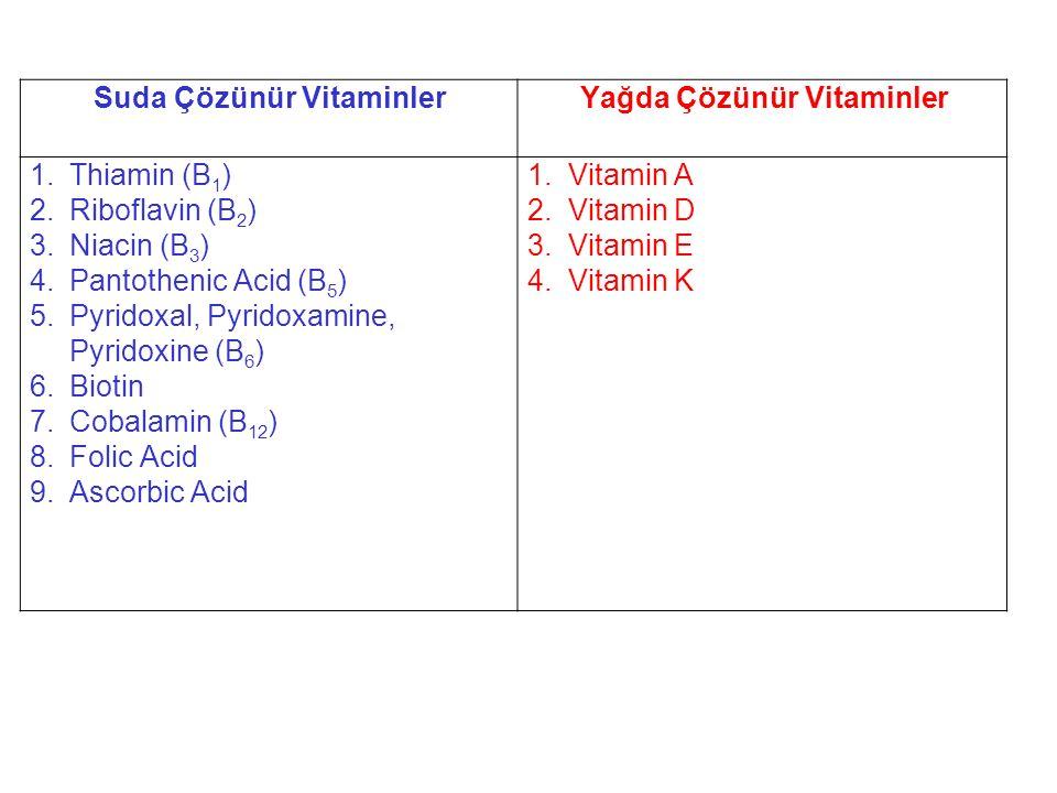 Suda Çözünür VitaminlerYağda Çözünür Vitaminler 1.Thiamin (B 1 ) 2.Riboflavin (B 2 ) 3.Niacin (B 3 ) 4.Pantothenic Acid (B 5 ) 5.Pyridoxal, Pyridoxami
