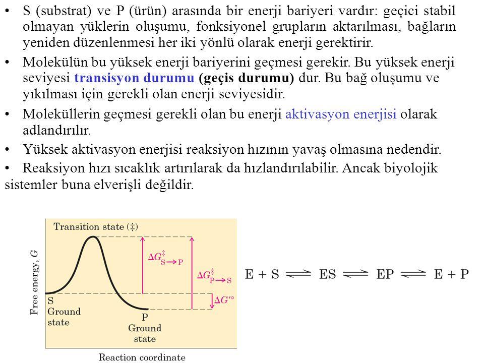 S (substrat) ve P (ürün) arasında bir enerji bariyeri vardır: geçici stabil olmayan yüklerin oluşumu, fonksiyonel grupların aktarılması, bağların yeni