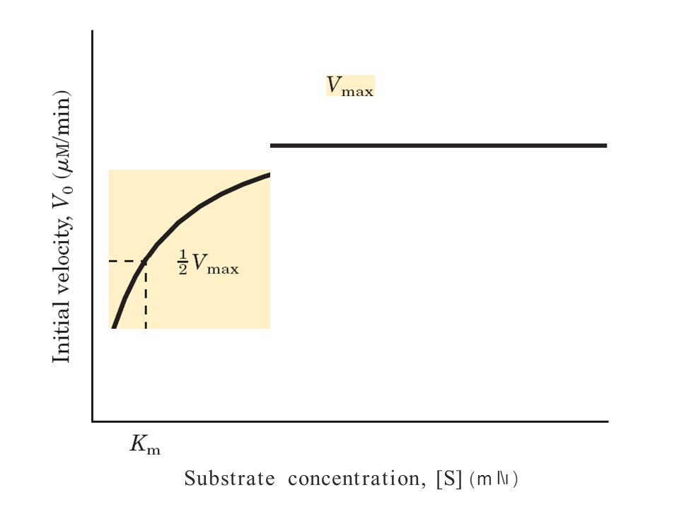 Substrate concentration, [S] (m l\ı )