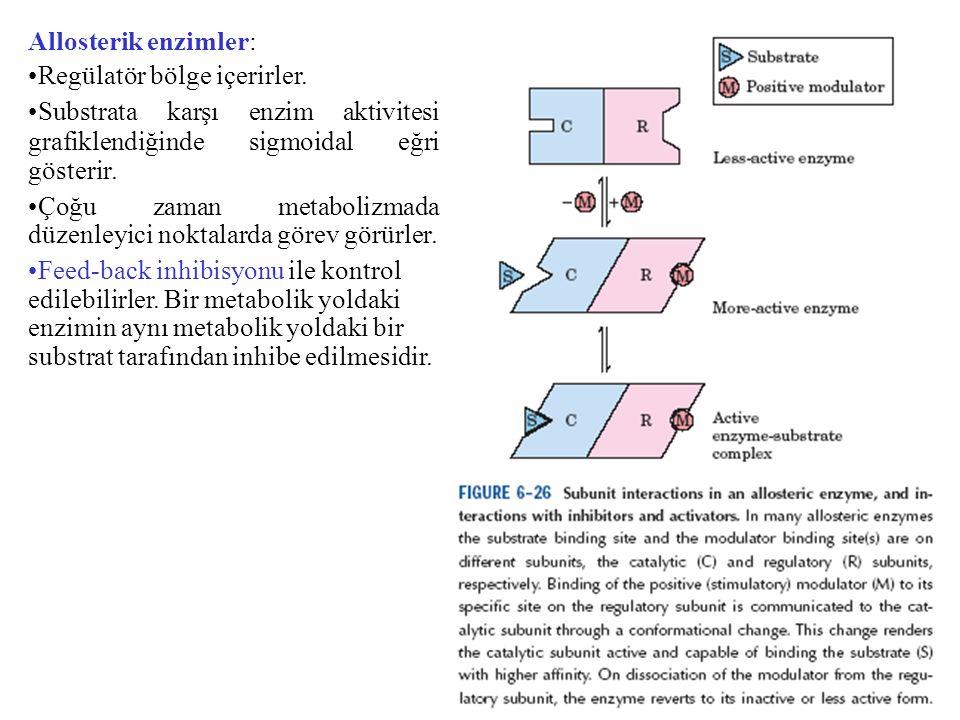 Allosterik enzimler: Regülatör bölge içerirler. Substrata karşı enzim aktivitesi grafiklendiğinde sigmoidal eğri gösterir. Çoğu zaman metabolizmada dü