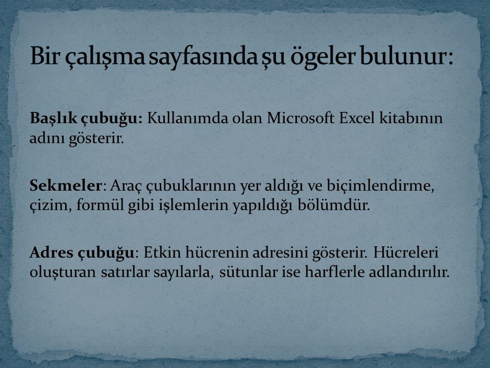 Başlık çubuğu: Kullanımda olan Microsoft Excel kitabının adını gösterir. Sekmeler: Araç çubuklarının yer aldığı ve biçimlendirme, çizim, formül gibi i