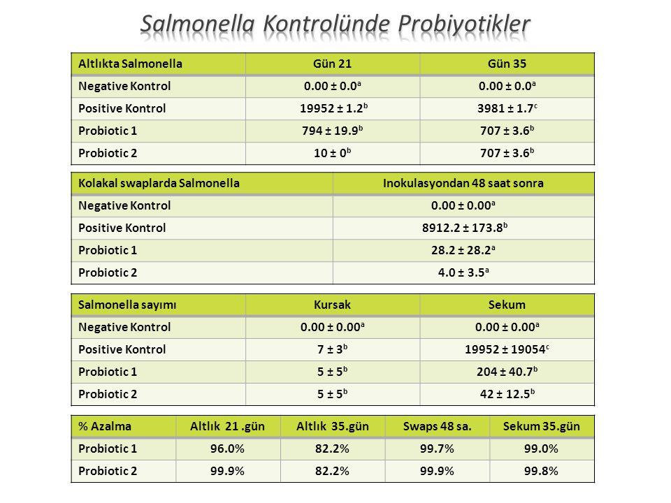 Altlıkta SalmonellaGün 21Gün 35 Negative Kontrol0.00 ± 0.0 a Positive Kontrol 19952 ± 1.2 b 3981 ± 1.7 c Probiotic 1794 ± 19.9 b 707 ± 3.6 b Probiotic