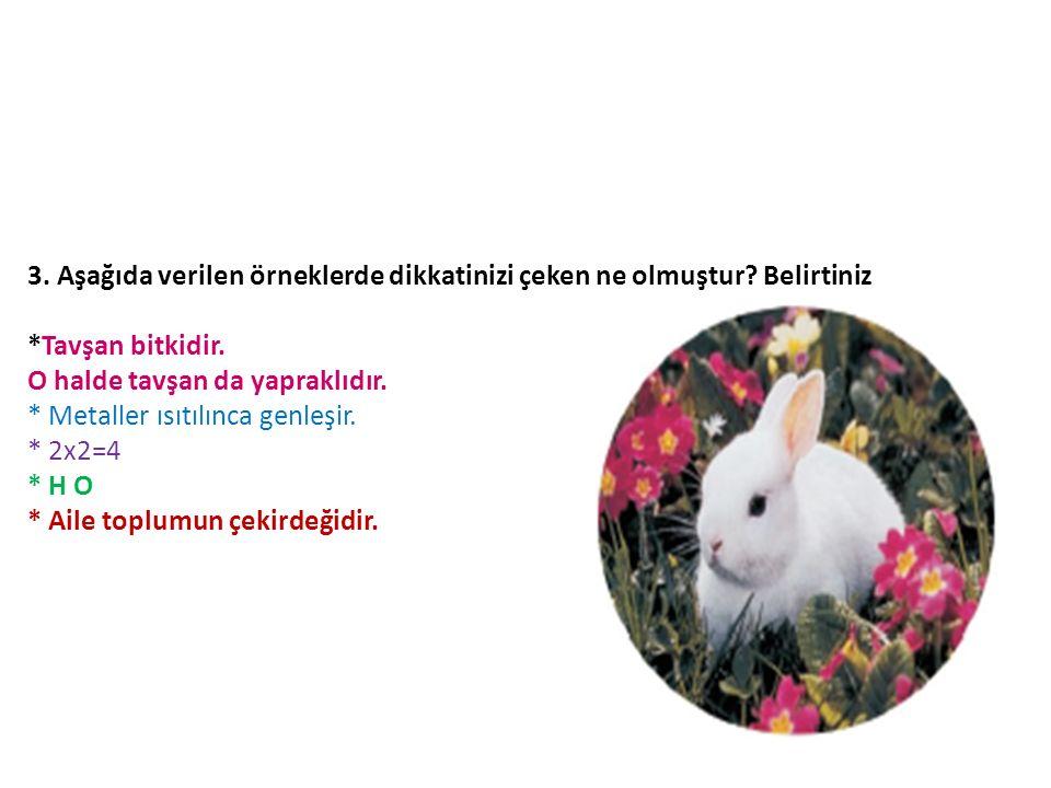 3. Aşağıda verilen örneklerde dikkatinizi çeken ne olmuştur? Belirtiniz *Tavşan bitkidir. O halde tavşan da yapraklıdır. * Metaller ısıtılınca genleşi